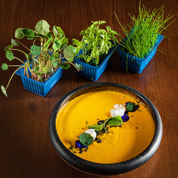 carrot cream soup with microgreens