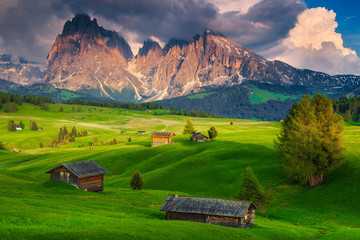 Wall Mural - Summer landscape in the Dolomites, Alpe di Siusi resort, Italy