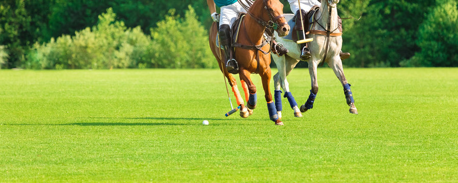 Two players in horse polo go into attack. Moment before the hammer strikes the ball. Summer season, green cut lawn, sunny day. Banner and Label Size