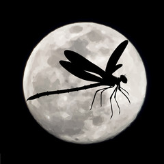 Vector silhouette of dragonfly with moon background. Symbol of night.
