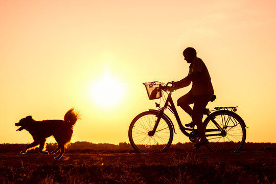 Senior woman riding bike and dog running in front, silhouette of riding person at sunset with pet