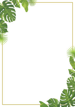 Tropical green leaves frame template. Floral border with place for text. Vector illustration.