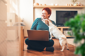 Woman works online using laptop computer, dog interferes. Quarantine coronavirus Wall mural