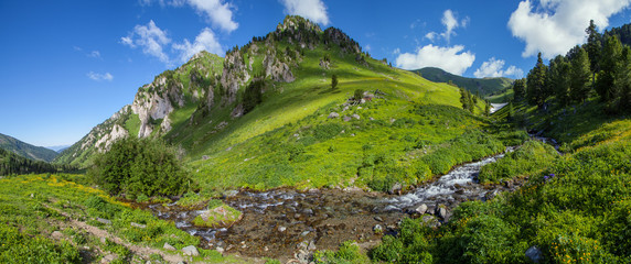 Wall Mural - Panoramic view of a mountain valley, summer greens and pure mountain stream