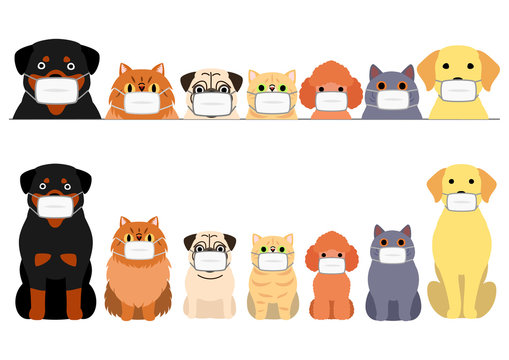 cute cartoon cats and dogs with medical mask border set