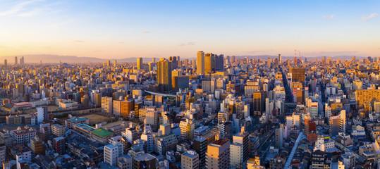 Garden Poster Kyoto panoramic view of cityscape of Osaka skyline
