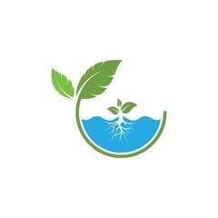 hydroponics logo vector illustration design