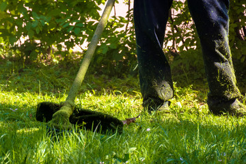 lawn care maintenance.