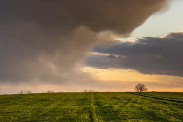 dramatic storm clouds illuminated by the setting sun over a spring field