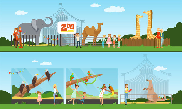 People Visiting the Zoo and Watching Different Wild Animals and Birds at Excursion Vector Illustration
