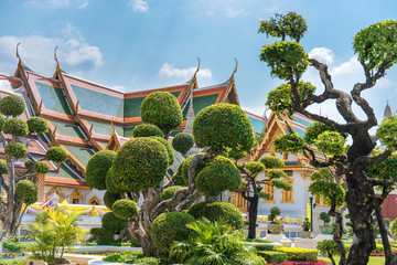 Topiary garden with trimmed trees on green lawn in front of Grand Palace in Bangkok, Thailand