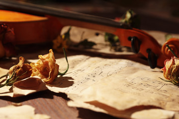 Dried flowers and vintage violin on old torn music notes close up. Selective focus.
