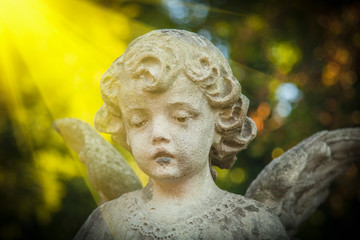 Fotomurales - Antique stone statue of wonderful angel in the rays of the sun