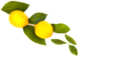 lemons with leaves on a white empty background. Wall mural