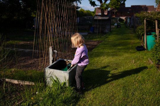 Watering a kitchen garden.