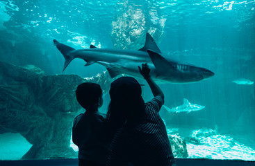 Mother and son admiring sharks in aquarium