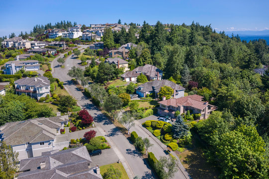 Aerial View of Residential Road Curving Along Hilltop near Bellevue, Washington