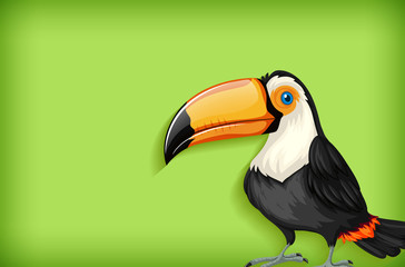 Background template with plain color and toucan bird Fototapete