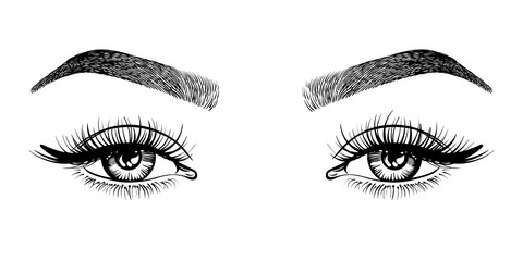 Line sketched woman eyes with long lashes and eyebrows, vector illustration. Wall mural