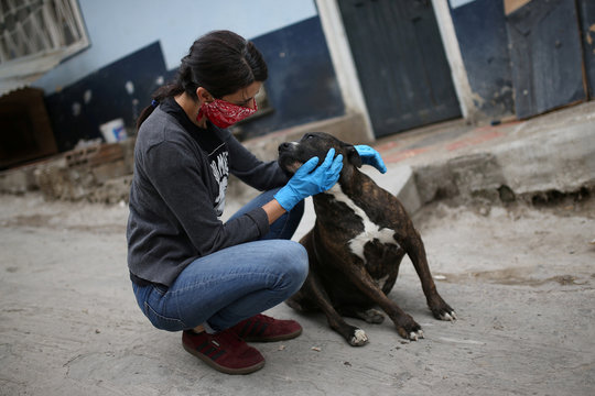 Tatiana Aguayo, an animal rights activist, cuddles a stray dog while wearing a face mask, amid the coronavirus disease (COVID-19) outbreak in Bogota