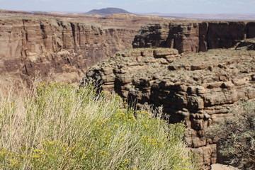 Wielki Kanion 204 - fototapety na wymiar