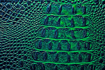 Wall Mural - Dark alligator patterned background, green color. Reptile skin.