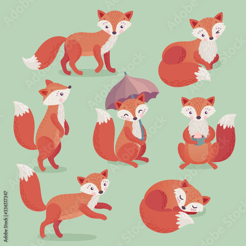 Wall mural Fox set hand drawn style.