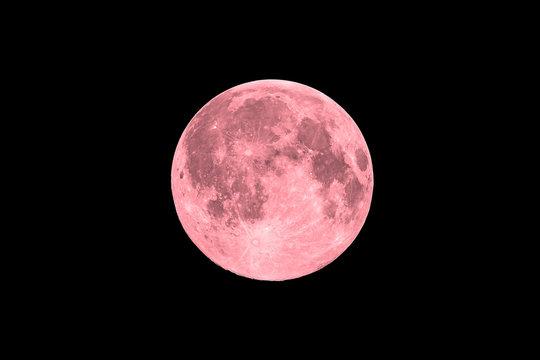 Pink full super moon on black sky background