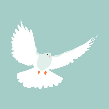 paloma de la esperanza, ave volando
