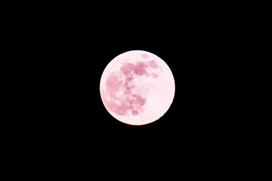 Strawberry Moon Spring Full Moon on Night Sky Background