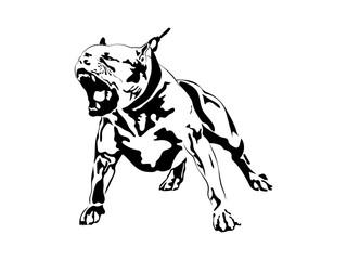 American Pit Bull Pitbull Bully Staffordshire Terrier Pit Bull Dog Pitbull Dog Black Logo Vector Cricut Cut Cutting