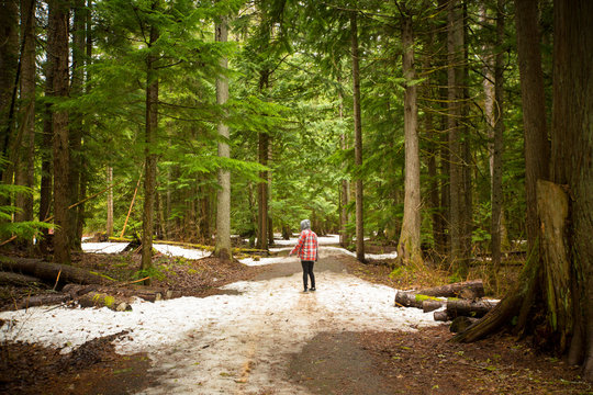 Woman wearing red plaid shirt walking through the green forest near Whistler, British Columbia.