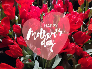 Happy Mothers Day horizontal greeting design. Photo of wine-colored tulips and hand-lettered greeting phrase on a semi-transparent heart shape