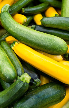 Close up of†green and yellow squash