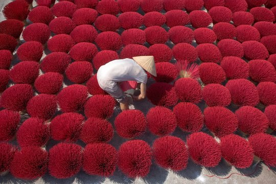 High Angle View Of Man Working Amidst Kochia Scoparia On Field