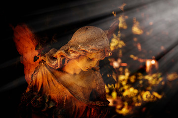 Fotomurales - Beautiful angel in the sunlight. Fragment of an ancient stone statue. Horizontal image.