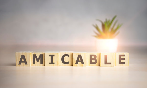 Amicable - word on wooden cubes, concept family