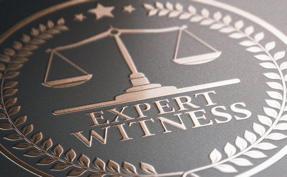 Legal Expertise. Expert Witness Service