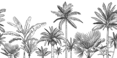 Seamless horizontal tropical background. Hand drawn palm trees, sketch exotic tropic jungle leaves and paradise palm tree vector wallpaper illustration. Exotic palm tree botanical, rainforest foliage Wall mural