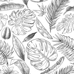 Wall Mural - Hand drawn tropical leaves pattern. Sketch drawing palm branch, monstera leaf and exotic forest plants leaf seamless vector background illustration. Flora foliage rainforest, wildlife forest seamless