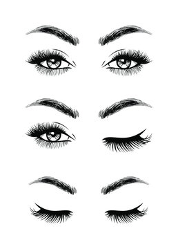Set open eyes, closed eyes. Beautiful woman face, eyebrows and lush eyelashes, lashes extensions. Element design. Beauty Logo. Vector illustration.