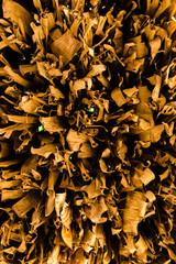 Decorative banana dry leaves