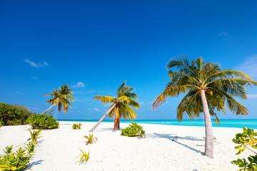 Wall Mural - Perfect tropical beach