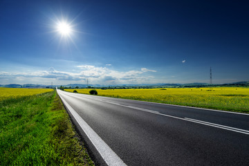 Fotobehang - Empty asphalt road between the yellow flowering rapeseed fields under radiant sun in the rural landscape
