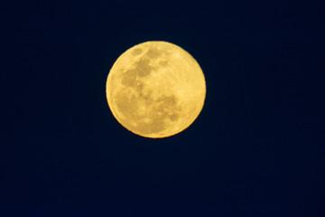 luna llena Fototapete