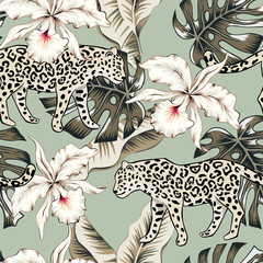 Fototapeta Tropical leopard animal, orchid flowers, palm leaves, green background. Vector seamless pattern. Graphic illustration. Exotic jungle plants. Summer beach floral design. Paradise nature obraz
