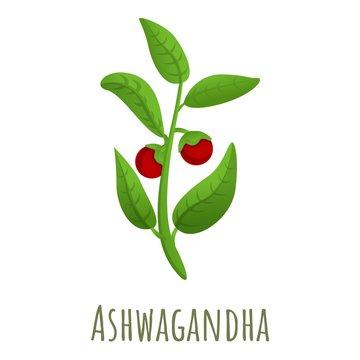 Ashwagandha plant icon. Cartoon of ashwagandha plant vector icon for web design isolated on white background