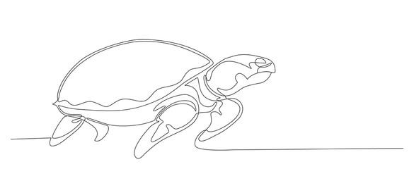 Hand drawing animal. Sea turtle continuous line vector design