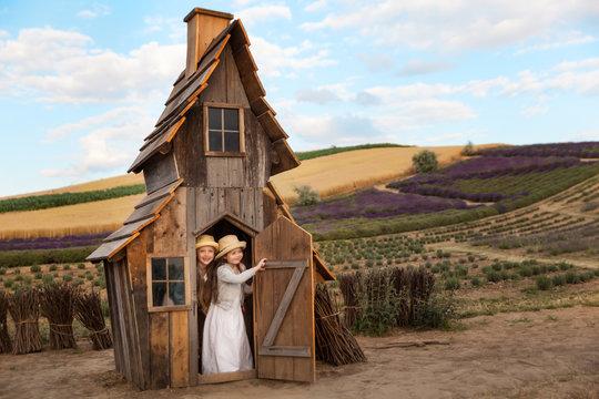 Happy kids having fun hiding in a fantasy wooden playhouse