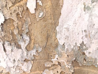Foto auf AluDibond Alte schmutzig texturierte wand Full Frame Shot Of Peeled Weathered Wall